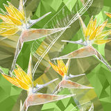 Seamless background with Bird of Paradise flowers in triangles s Royalty Free Stock Images