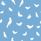 Seamless Background With Birds Royalty Free Stock Image