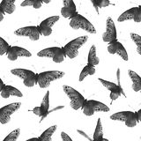 Seamless background with black butterflies hand-drawn with ink. Traditional oriental ink painting sumi-e, u-sin, go-hua. Seamless background with butterflies Stock Photos