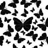 Seamless background of black and white butterflies. Pattern ornament Royalty Free Stock Photography