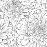 Seamless background with black and white flowers. Beautiful seamless background with monochrome black and white flowers.Hand-drawn contour lines and strokes Stock Photography