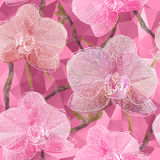 Seamless background with blooming Garden Orchid flowers in trian. Vector Seamless background with blooming Garden Orchid flowers in triangles style Stock Photos