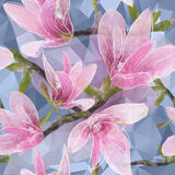 Seamless background with blooming magnolia flowers in triangles Stock Photography