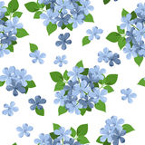 Vector seamless background with blue flowers. Vector illustration of seamless background with blue plumbago flowers and green leaves on white Royalty Free Stock Photo
