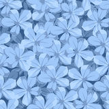 Seamless background with blue flowers. Vector illustration. Vector seamless background with blue plumbago flowers Royalty Free Stock Photography