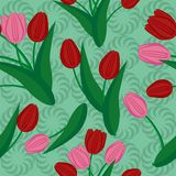 Seamless background with boqoets of tulips Stock Images