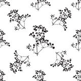 Seamless background with branches of beautiful hand-drawn silhouette gypsophila Royalty Free Stock Photography