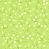 Seamless background with branches, flowers, leaves and solar flare. Stock Photography