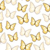 Seamless background from bright butterflies. royalty free stock photos