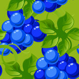 Seamless background with bright fresh jucy grapes Royalty Free Stock Images