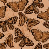 Seamless background. Butterflies on old dirty pape Stock Photo