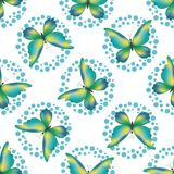 Seamless background, butterflies Stock Photos