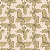 Seamless background with butterflies vintage color. Stock Photos