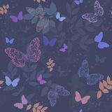 Seamless background with  butterfly. Seamless floral  background with  butterfly Stock Image