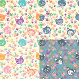 Seamless background cat faces Stock Photography