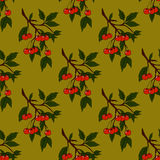 Seamless background with cherries. Seamless background with cherries on a green background Royalty Free Stock Photos