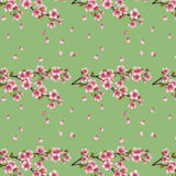 Seamless background with cherry tree sakura blosso Royalty Free Stock Photo