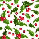 Seamless background with Christmas holly. Royalty Free Stock Photos