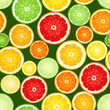 Seamless background with citrus fruits. Stock Images