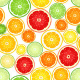 Seamless background with citrus fruits. Royalty Free Stock Photo