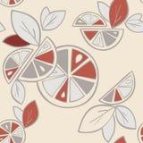Seamless background Citrus Mix Royalty Free Stock Image