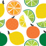 Seamless background with citrus Royalty Free Stock Photo