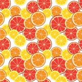 Seamless background with citrus slices. Tile fruit vector illust Royalty Free Stock Photography