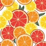 Seamless background with citrus slices. Tile fruit vector illust Stock Photo
