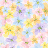 Vector seamless background with colored flowers. Royalty Free Stock Image