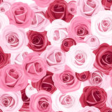 Seamless background with colored roses. Illustration of seamless background with red, pink and white roses and rosebuds Royalty Free Stock Photography