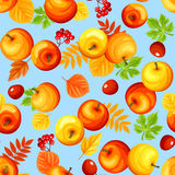 Seamless background with colorful autumn apples and leaves. Vector illustration. Stock Photo