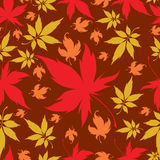 Seamless Background with colorful Autumn Leaves Stock Images