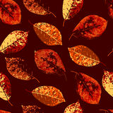 Seamless background with colorful autumn leaves. Vector illustration Royalty Free Stock Images