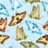 Seamless background of colorful butterflies. Seamlles vector illustration