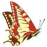 Seamless background of colorful butterflies. Vector illustration stock illustration