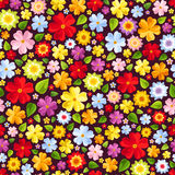 Seamless background with colorful flowers. Vector illustration. Stock Images