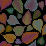 Seamless background from colorful leaves.  Royalty Free Stock Photos