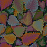 Seamless background of colorful leaves with shadow.  Royalty Free Stock Photo