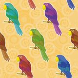 Seamless background, colorful parrots Royalty Free Stock Images