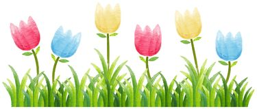 Seamless background with colorful tulips in garden. Illustration Stock Photos