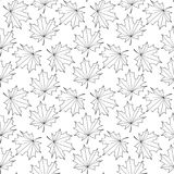 Seamless  background of the contours of a maple leaf.  Royalty Free Illustration