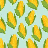 Seamless background with corn Royalty Free Stock Photo