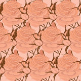 Seamless background. Cream roses on a beige background Royalty Free Stock Photography