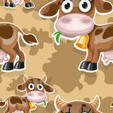 Seamless background with cute baby cow Stock Images