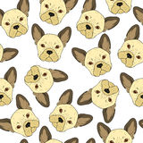 Seamless background with cute beige bulldog sketch . Realistic dog Royalty Free Stock Photos
