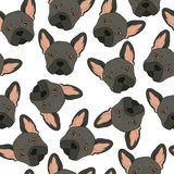 Seamless background with cute black bulldog sketch . Realistic dog Royalty Free Stock Image