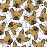 Seamless background with cute brown bulldog sketch . Realistic dog Royalty Free Stock Photo