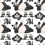Seamless background  with cute panda Stock Photography