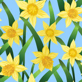 Seamless background with daffodils Stock Image