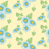 Seamless  background with daisies Stock Photos
